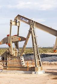 Французская нефтегазовая компания Total спрогнозировала конец нефтяной эпохи после 2030 года