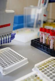 В Краснодаре 45 человек заразились коронавирусом