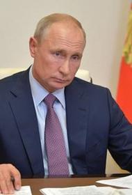 Путин призвал заняться декриминализацией в системе лесоустройства