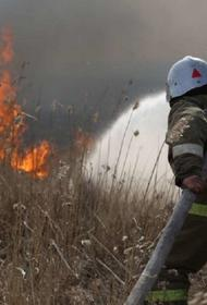 В Ростовской области из-за природного пожара эвакуировали хутор