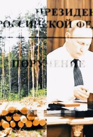 Эксперт «Гринпис» Михаил Крейндлин дал оценку предложениям президента по защите российских лесов
