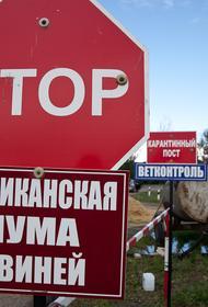 В Хабаровском крае с чумой борются напалмом