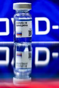 Лукашенко выразил России благодарность за поставки вакцины от COVID-19