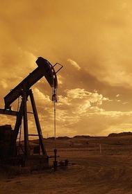 Эксперт по международным вопросам Косолапов объяснил снижение цен на нефть более чем на 4%