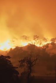 Калифорнию душат пожары