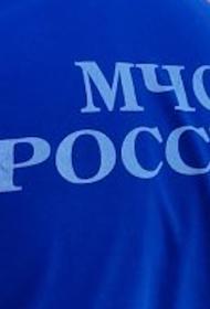 При крушении легкомоторного самолета в Пензенской области погиб пилот