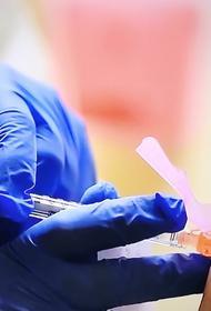 В Перу не исключили покупку российской вакцины от COVID-19