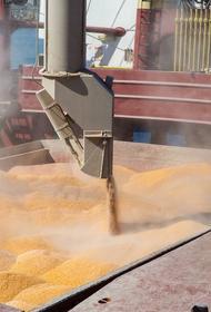 Российскую пшеницу покупают более 100 стран мира