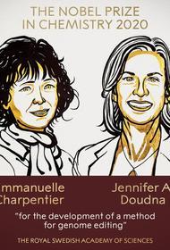 Нобелевскую премию по химии присудили двум женщинам-учёным за развитие метода редактирования генома