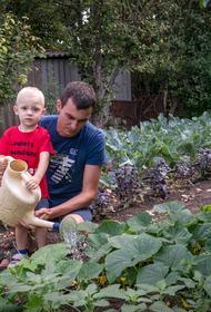 Фермер Алексей Сидоренко: Знаю, что нужно земле и как на ней работать