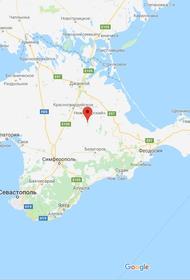 Член команды Януковича пытается отсудить денег у крымских домов отдыха