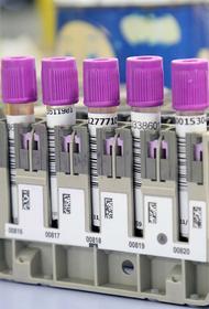 В России выявлен максимальный суточный прирост заболевших COVID-19 с начала пандемии – 12 126 человек