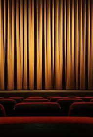 РБК: В театрах Москвы введут паспортный режим