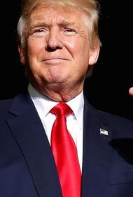 Трамп возобновил предвыборную кампанию