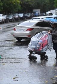 Синоптик Синенков предупредил москвичей о дожде в понедельник