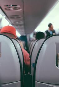 Источник, близкий к авиавластям: РФ и Сербия могут возобновить авиасообщение в октябре