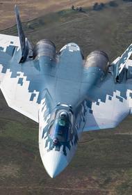 Сайт Avia.pro: российский истребитель Су-57 показал свое превосходство над американским F-35