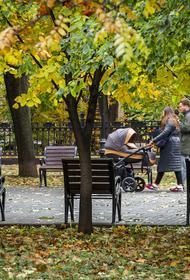 Синоптик Позднякова заявила, что после похолодания в выходные в Москве потепления не будет