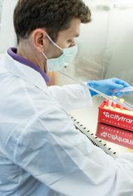 Биолог Баранова назвала причину неточности ПЦР-тестов при наличии пневмонии