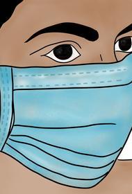 Биолог сообщил о риске заразиться коронавирусом из-за сушилки в уборной