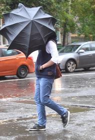 Синоптик Леус предупредил москвичей о дождях с мокрым снегом в воскресенье