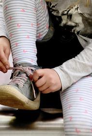 Прокуратура будет проверять сообщения о нападении рыси на ребенка в Истре