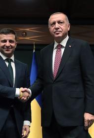 Лидер Украины скатался в гости к своему турецкому коллеге
