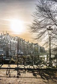 Амстердам защитит мосты от велосипедистов цветами