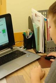 Эксперт ВШЭ: Онлайн-технологии позволили не прерывать ученый процесс в школах