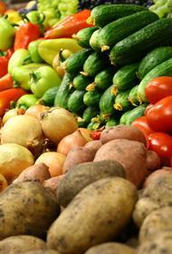 Урожай — отдача от станицы: кубанские аграрии подвели итоги года