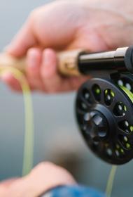 Рыбак поймал окуня с торчащей из его рта змеей