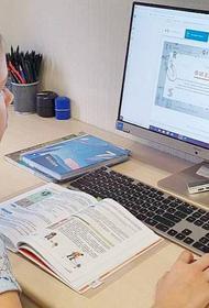 Эксперт РАН: Наличие МЭШ облегчило переход школ к интернет-обучению