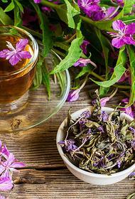 Как иван-чай помогает женщинам забыть о морщинах и лишних кило