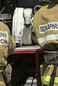 Женщина с ребенком погибли при пожаре в частном доме в Самарской области