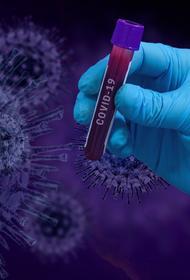 Восемь несовершеннолетних заболели коронавирусом на Кубани за сутки