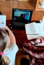 Более миллиона «пятерок» выставили ученикам за неделю дистанционного обучения