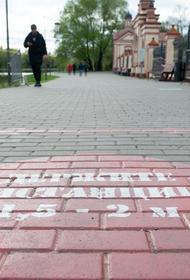 Названы регионы в России, где выявили наибольшее число  случаев  коронавируса