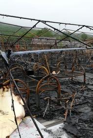 Генпрокуратура утвердила обвинение по делу о пожаре в Холдоми