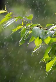 В конце месяца на Кубани ожидаются похолодание и дожди