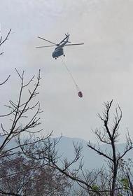 Под Туапсе площадь лесного пожара увеличилась почти до 12 гектаров