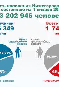 Нижегородская область находится в демографической яме