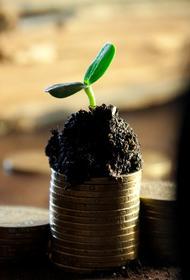 В Совфеде заявили, что до сих пор нет четкого критерия для определения бедности человека