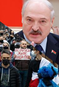 Репрессивный «каток» Лукашенко: за время протестов в Белоруссии уже возбуждено 657 уголовных дел