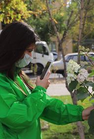 В Волгограде проходит «ШедеврALный флэшмоб»