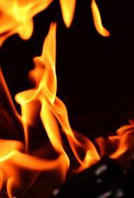 На береговой линии села Пологое Астраханской области произошел пожар