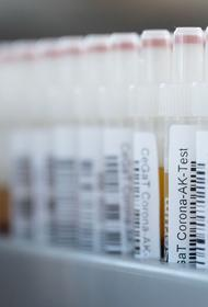 Эпидемиолог Пшеничная считает, что на пике COVID-19 в РФ может быть 20 тыс. случаев заражения в сутки