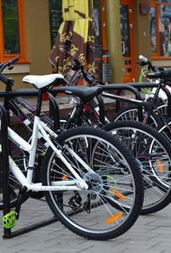 Депутат МГД Мария Киселева: Теплая погода позволит работать велопрокату в Москве до 1 декабря