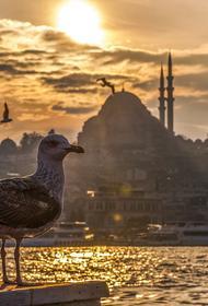 В Турции с начала курортного сезона  от коронавируса умерли 11 россиян