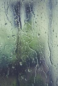 В Москве сегодня синоптики прогнозируют небольшой дождь