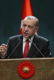 Политолог Семен Багдасаров: скоро Эрдоган будет терроризировать юг России
